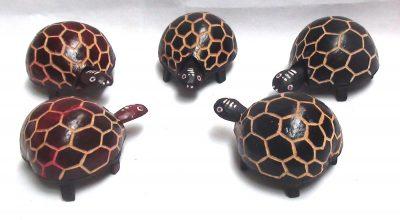 Bobble Head Turtle